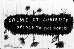 calme curieuse 2017