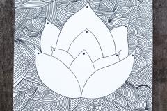 lotus w
